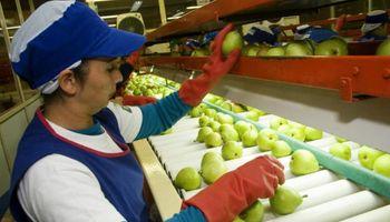 Fruta argentina a Brasil: nuevos controles y trabas