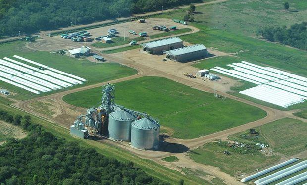 Con cifras récord, por qué la caída de grandes operadores terminó siendo negocio para las cooperativas del agro