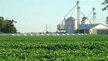 """""""Las cooperativas juegan un rol clave en el comercio exterior de granos"""""""