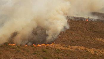 Declaran la emergencia agropecuaria nacional para Córdoba, Chaco y Corrientes por incendios y sequía
