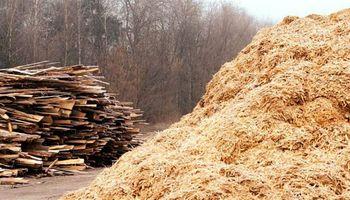Córdoba: generarán energía eléctrica con la gasificación de biomasa