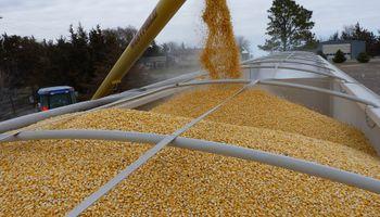 Se buscará cubrir las necesidades financieras con cultivos alternativos a la soja