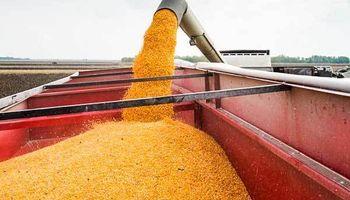 Informe del USDA: lo más destacado de los primeros datos del año
