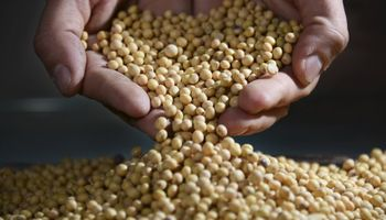 Tecnología en el mercado de granos: el coronavirus aceleró la digitalización del arbitraje