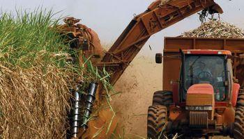 Biocombustibles: aumentan un 14% el biodiésel e igualan el valor del bioetanol de caña y maíz