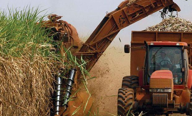 El bioetanol de caña de azúcar aumentó un 3,3% contra un 12% del de maíz y un 14% del biodiesel que se usa para el gasoil.