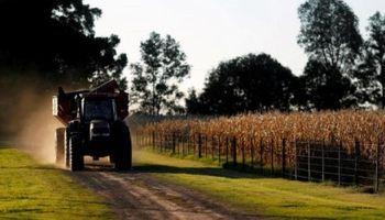 Soja, trigo y maíz: la estrategia para capturar precio, quedar dolarizado post elecciones y escapar al riesgo político