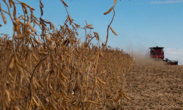Los granos han deteriorado su poder de compra en el último año por la baja de precios, siendo la soja y el maíz los más perjudicados.