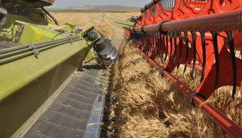 Cumple 25 años uno de los sistemas que revolucionó la cosecha