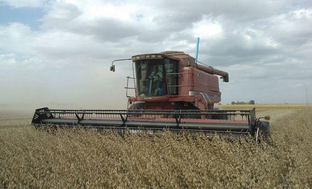 La cosecha marcó rindes de 29 a 28 qq/ha en la región núcleo.