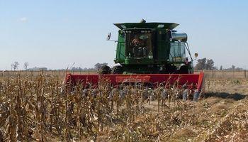 Exportaciones: industria impulsó suba en enero, pero el agro la contrarrestó