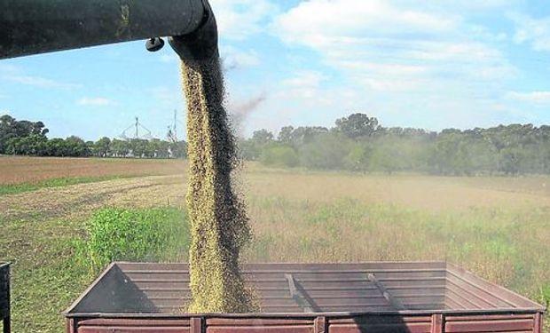 Sector agroindustrial argentino facturará US$ 47.000 millones en 2017.