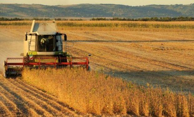 Contribución de la agroindustria a la economía en 2017.