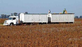 Cosecha en Argentina: faltan camiones para el transporte