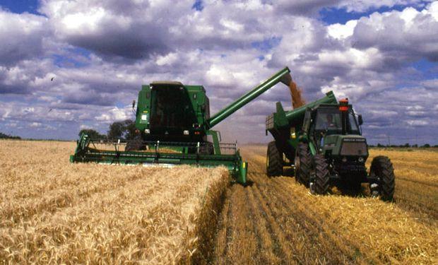La cosecha de trigo fue estimada en 12,5 millones de toneladas.