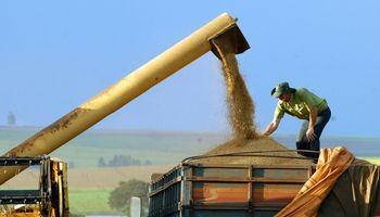 Brasil, rumbo a lograr cosecha récord de casi 200 M de toneladas
