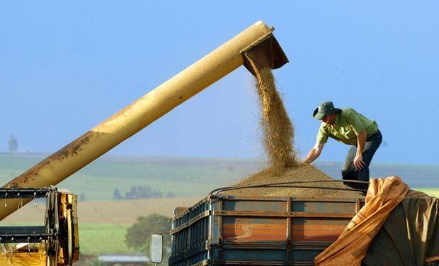 La proyección oficial de marzo indica una mejora del 3,6% respecto de la cosecha total del año pasado y una de casi el 10% en el caso de la soja.