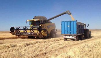 Comenzó la cosecha de cebada sobre el centro del área agrícola nacional