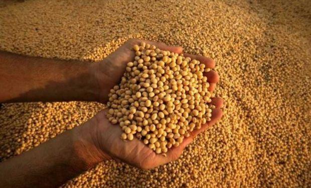 Brasil proyecta un incremento de 30,1% en la cosecha de granos 2017.