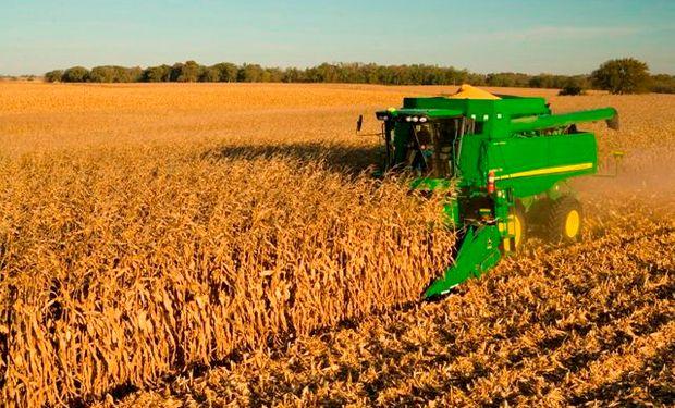 Informa estimó la cosecha de maíz en Brasil en 78,9 millones de toneladas.