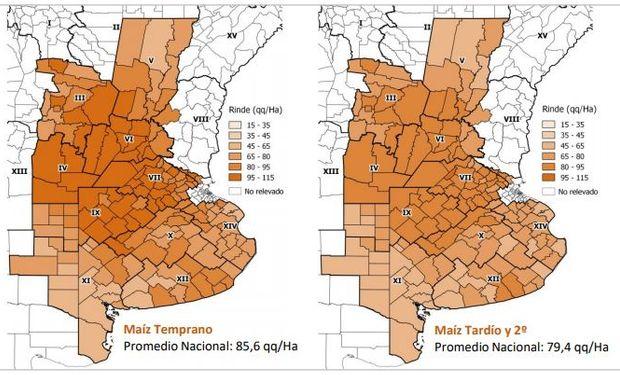 Del maíz total de la última campaña, un 55% fue de planteos tempranos y un 45% correspondió a cuadros tardíos.