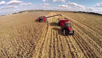 Ahora esperan un nuevo cosechón de maíz en Estados Unidos