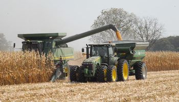 Maíz: aumentan pronóstico de cosecha