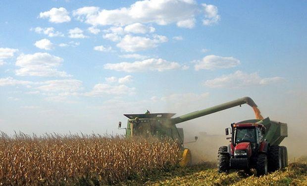 A la fecha, el avance de cosecha de maíz cubrió el 1,7 % de la superficie apta.