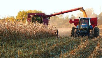 Nuevas interrupciones en la cosecha de maíz