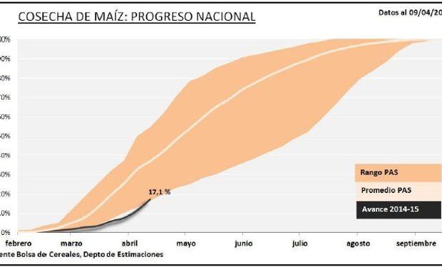 Progreso nacional de la cosecha de maíz. Fuente: BCBA.