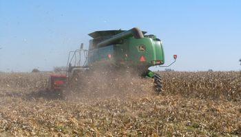 Comenzó la cosecha de maíz de primera en Santa Fe