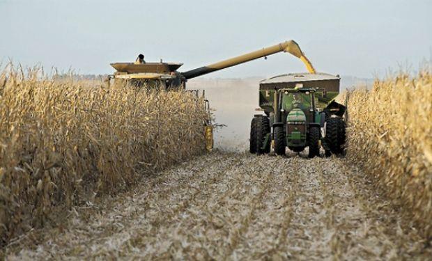 Centro norte de Santa Fe: a paso firme avanzó la cosecha.