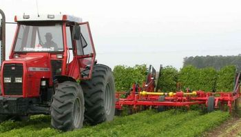 Apoyada en el clima, la cosecha de maní subió 38% en Córdoba