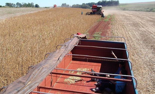 Productos agropecuarios traccionan las exportaciones