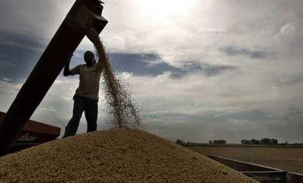 La producción de granos aumentó el 260% entre 1989 y 2012