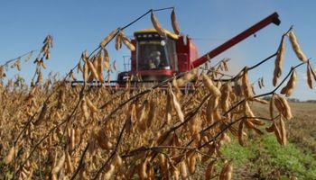 Pedido al Gobierno por las retenciones a la soja
