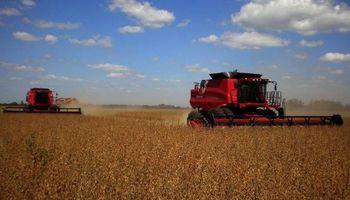 Habrá más de 10 millones de toneladas de soja en Paraguay