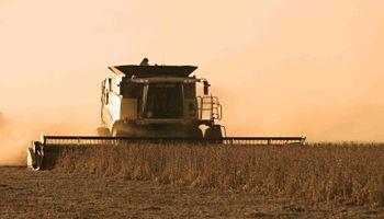 Avanza la cosecha a paso firme