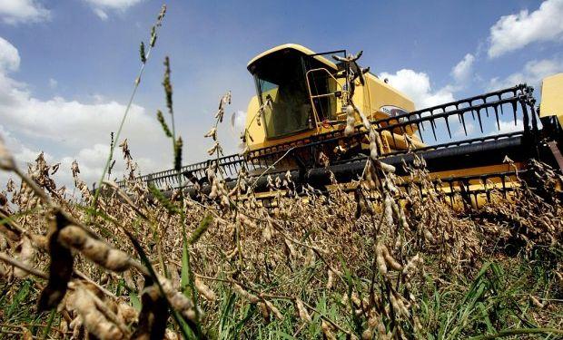 Soja: comienzan a recolectarse los primeros lotes sobre el centro de la región agrícola.
