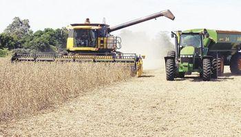Productores afectados por la sequía solicitan al Gobierno medidas concretas
