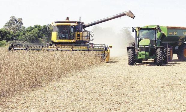 Productores piden baja de impuestos por la sequía.