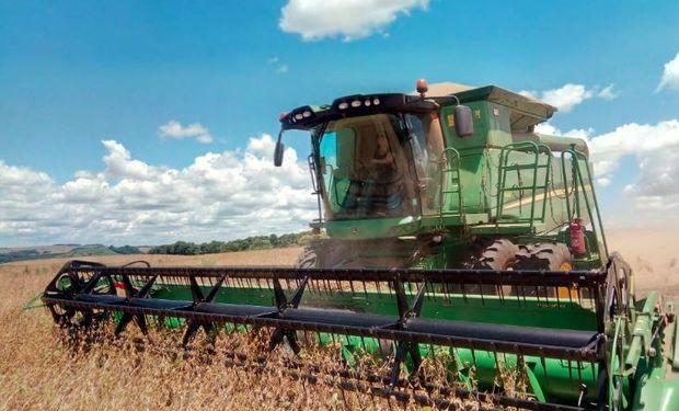 Avanza la cosecha de soja en Brasil.