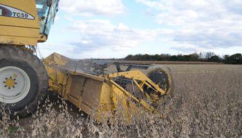 Sin lluvias en el horizonte, el clima permite pisar el acelerador de la cosecha