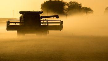 Cosecha de soja avanza lentamente en Argentina