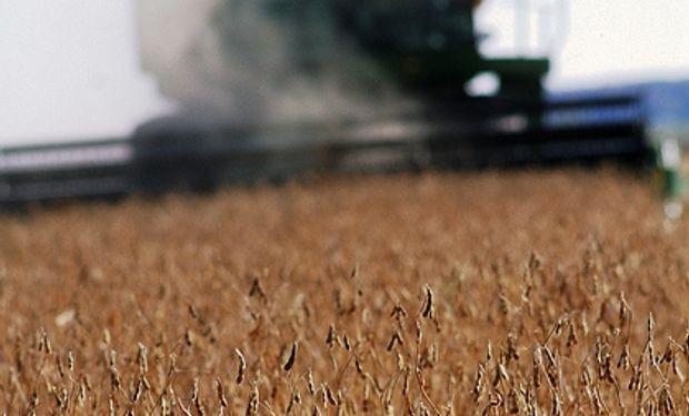 Ya se cosechó el 63% de la soja