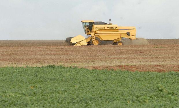 La expectativa del mercado es que el USDA informe un aumento en la estimación para la cosecha de soja en Argentina.