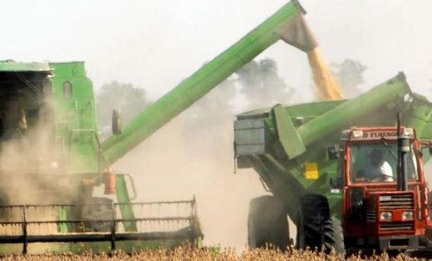 Gobierno reduce estimación para la cosecha de soja