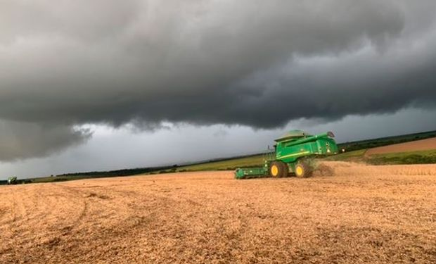 En promedio se espera una cosecha por encima de los 124 millones de toneladas de soja.