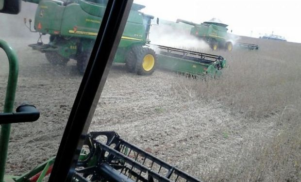 La cosecha de soja en Brasil se ubica apenas por encima del año pasado.