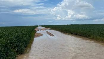 En medio de un programa de embarques récord, la cosecha de soja en Brasil se mantiene con el menor avance en 10 años